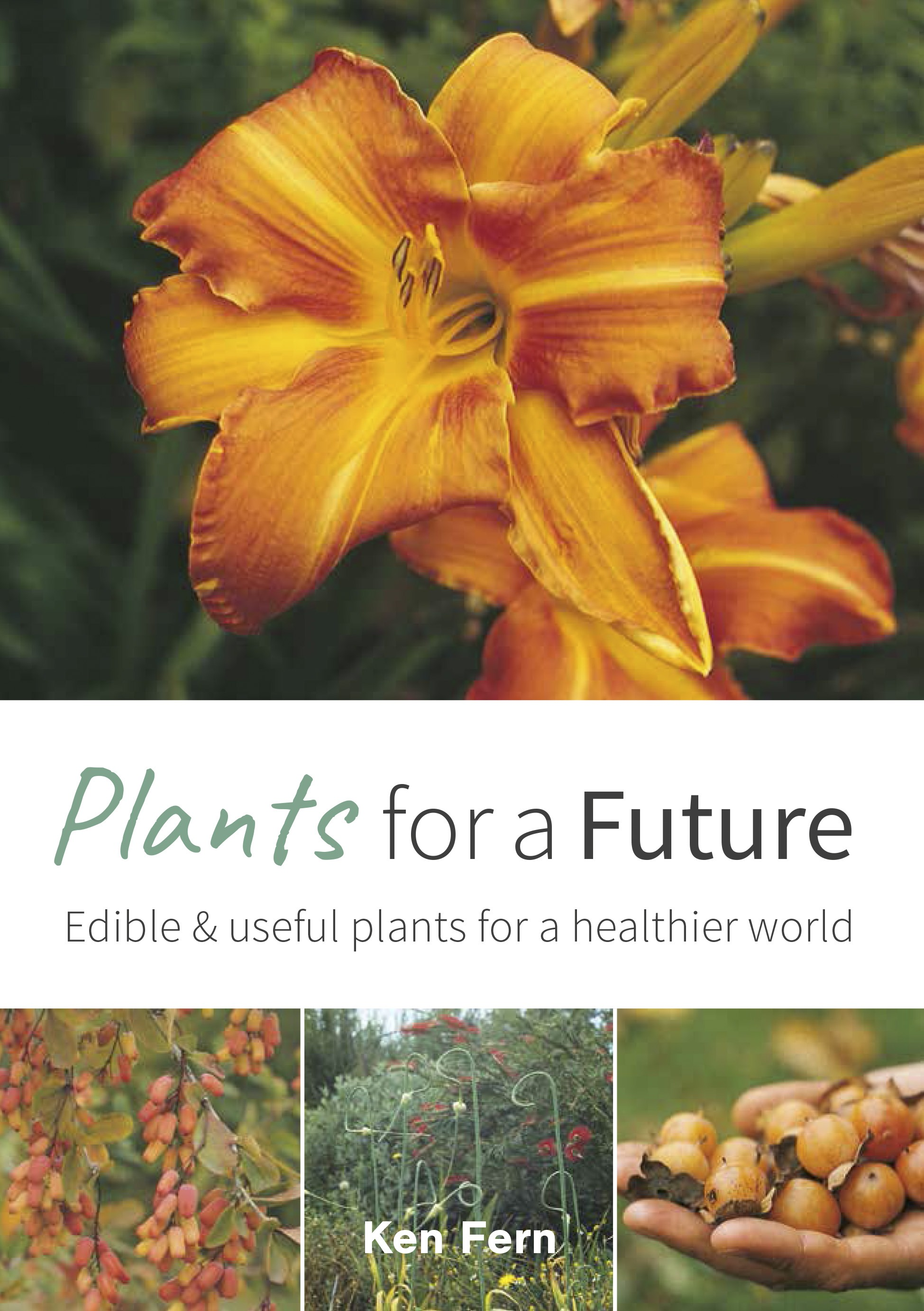 Plants For a Future: Edible & Useful Plants for a Healthier World by Ken Fern