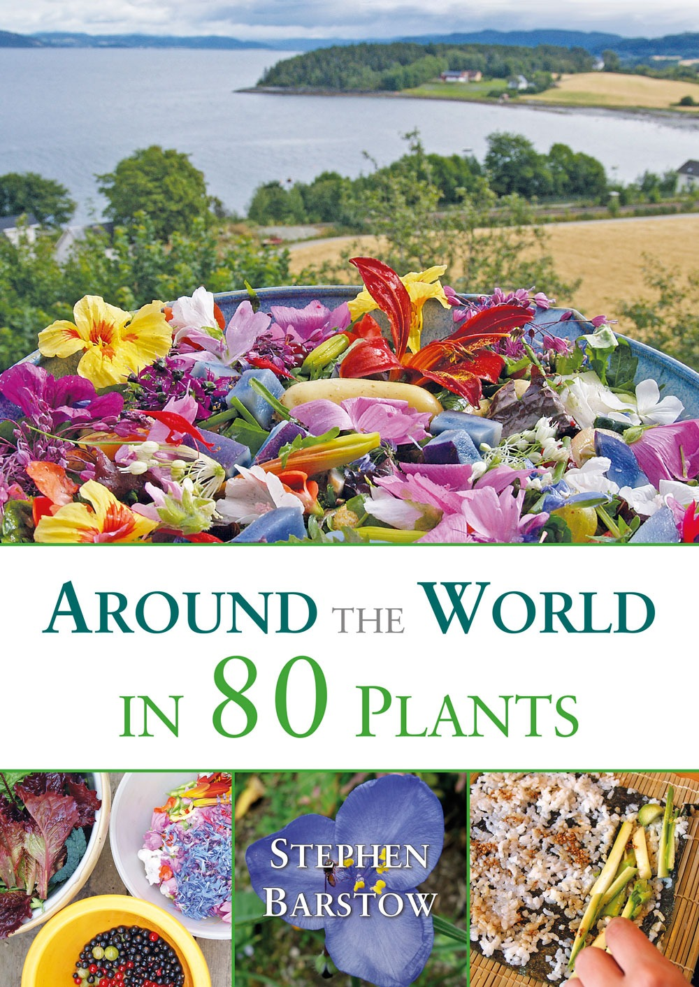 Around The World in 80 Plants: An Edible Perennial Vegetable Adventure For Temperate Climates by Stephen Barstow