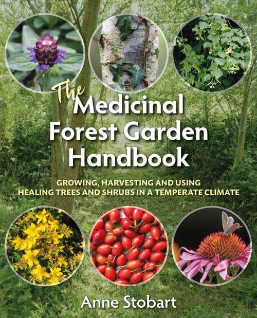 Medicinal Forest Garden Handbook by Anne Stobart