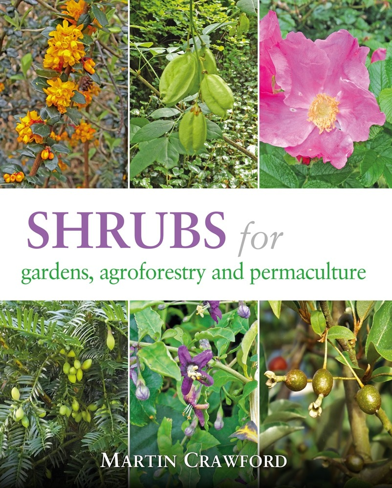 Shrubs for Gardens, Agroforestry and Permaculture by Martin Crawford